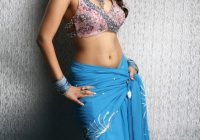 Nikitha Sexy Navel Show Photos Gallery in Saree ..