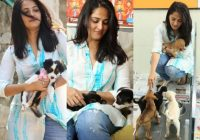 Photos: Tollywood Stars With Their Pet Dogs – Filmibeat – vegetarian actors in tollywood