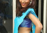 Slim Tollywood Heroine Gayatri Pics in Blue Saree – 10 Pics – photos of tollywood heroines in saree