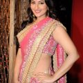 Sonakshi Sinha Pink Saree Photos | Actress Saree Photos ..