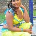 South India Item Songs Actress Meghana Naidu Latest ..