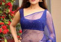 Telugu Actress Hot Navel in Transparent Saree pictures ..