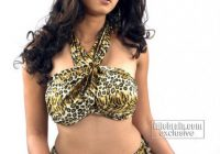 Telugu tollywood actress hot, sexy photos, telugu actress ..