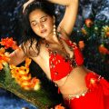 Tollywood Actress Anushka Shetty Navel Show Stills In Red ..