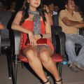 Tollywood actress hot Thighs gallery – tollywood actress thighs