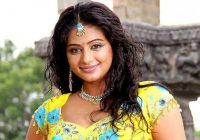 Tollywood Actress Priyamani hot Navel show photos stills ..