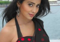 Tollywood Actress Shriya Sharan Hot in Black Saree Saree ..