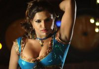 Tollywood Item Girls hot Wallpapers – tollywood movie wallpapers