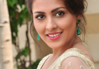 Tollywood Telugu Actress Madhu Shalini HD Wallpapers Photo ..