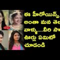 Tollywood Top Heroines Native Places | Tollywood News ..