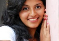 TOLLYWOOD TRIP: Actress Anjali Photos – tollywood picture