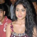 Tollywood Updates & Gossips: Shriya Wallpapers – tollywood updates