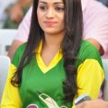 Tollywood Vs Bollywood Cricket Photo Gallery – bollywood vs tollywood