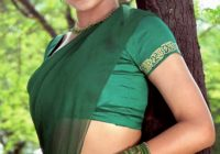 Trisha tollywood hot actress in green Saree – vegetarian actors in tollywood